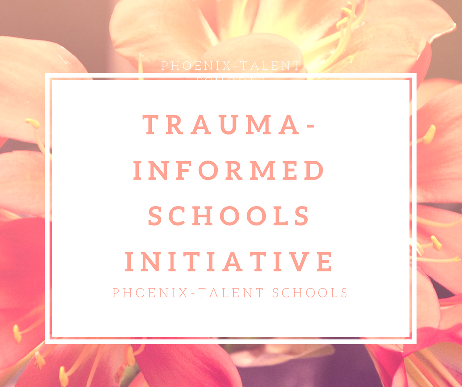 trauma-informed schools initiative